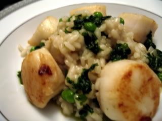Pea Risotto with Scallops and Basil Oil