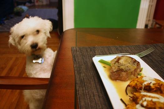 len wants dinner.jpg