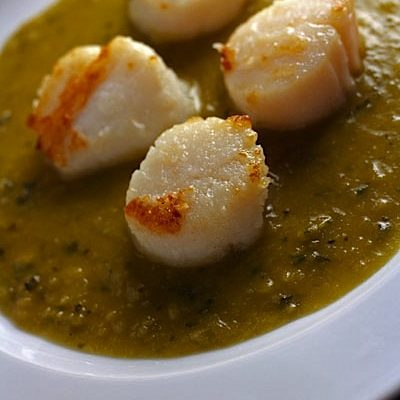 Scallops with Minted Pea Sauce Appetizer