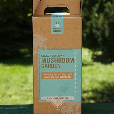 Thursday Giveaway: Grow Your Own Mushroom Garden