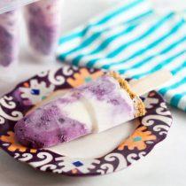 Blueberry Rhubarb Frozen Yogurt Breakfast Pops