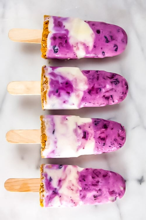 blueberry rhubarb frozen yogurt pops