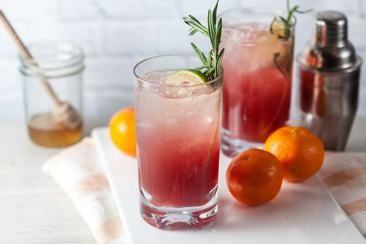 Sparkling Cranberry-Clementine Gin Cocktail with Rosemary + Honey