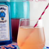 Strawberry Rhubarb Shrub Cocktail