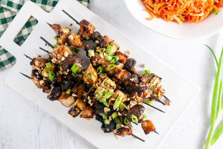 Hoisin Glazed Chicken Kebabs 1